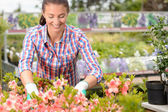 Working with potted flowers — Stock Photo