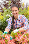 Florist arranging flowers — Stock Photo