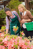 Woman help customer choose flowers — Stock Photo
