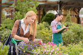 Woman shopping for flowers — Stock Photo
