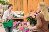 Woman shopping flowers — Stock Photo