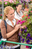 Woman in garden center — Stock Photo