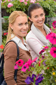 Customer women in garden center — Stock Photo