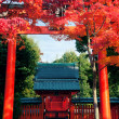 ������, ������: Kyoto Shrine