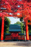 Kyoto Shrine — Stock Photo