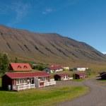 İzlanda'daki bir vadi evleri — Stok fotoğraf #17435793