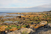 Coastal Rocks, Bornholm — Stock Photo