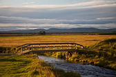 Wooden bridge over a small river in Iceland — Stock Photo