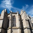 Chatedral in Limoux, France — Stock Photo