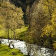 River in Andorra — Stock Photo #36373567