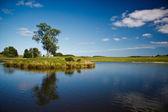 Vackra sjön i dyrehave park, danmark — Stockfoto