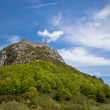 Montsegur castle — Stock Photo #37461615