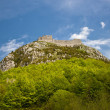 Montsegur castle — Stock Photo #38309031