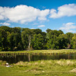 Beautiful lake in Dyrehaven near Copenhagen — Stock Photo #41520639