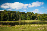 Beautiful lake in Dyrehaven near Copenhagen — Stock Photo