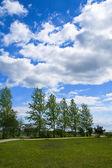 Park in springtime — Stock Photo