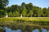 Pond in a park — Stock Photo