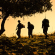 Royalty-Free Stock Photo: Three soldiers patrolling during sunset