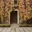 Leaves over old house door at autumn — Stock Photo