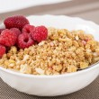 Zoomed golden cereals with berries with spoon — Stock Photo #25033465