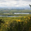 View over forest and lakes from mountain — Stock Photo