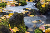 Stream flow between mossy rocks to lake — Stock Photo