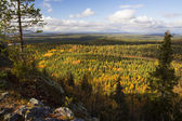 View over autumn forest from rocky mountain — Stock Photo