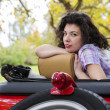 Stock Photo: Womrelay at retro car seat back