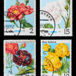 Postage stamp - Stok fotoraf
