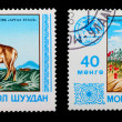 Postage stamp — Stock Photo #19973317
