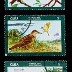 Postage stamp — Stock Photo #19973325
