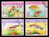 Postage stamp — Foto de Stock