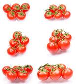 čerstvá šťavnatá rajčata — Stock fotografie