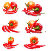 Fresh juicy peppers — Stock Photo
