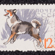 Postage stamp — Stock Photo #27671261
