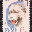 Postage stamp — Stock Photo #27671263