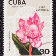 Postage stamp — Stock Photo #27671301