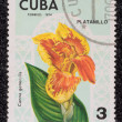 Postage stamp — Stock Photo #27671339