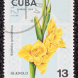 Postage stamp — Stock Photo #27671345