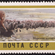 Postage stamp — Stock Photo #27671831