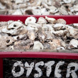 Oyster shell seafood — Stock Photo