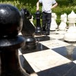 Chess — Stock Photo #14450273