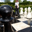 Chess — Stock Photo #14450279