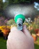 Watering hose pipe garden flowers — Stock Photo