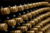 Wine bottles winery — Stock Photo