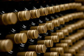 Wine bottles winery — Stock Photo
