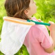 Young Boy In Field With Insect Net — Stock Photo #24440667