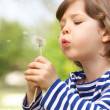 Young Boy Sitting In Field Blowing Dandelion — Stock Photo
