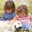 图库照片: Two Children Petting Family Dog In Summer Field