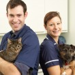 Stock Photo: Male Veterinary Surgeon And Nurse Holding Cat And Dog In Surgery